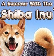 A Summer with the Shiba Inu中文版