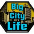 城市生活模拟器2破解版