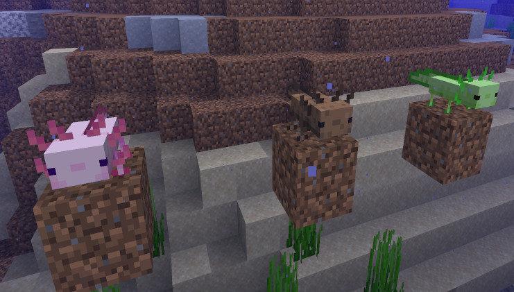 Minecraft1.17圖3