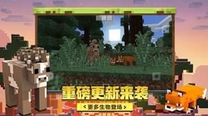 Minecraft國際版1.17