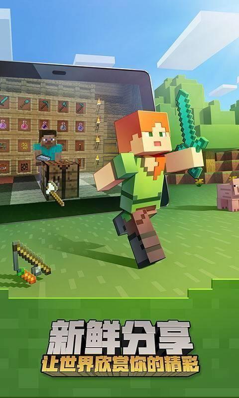 Minecraft國際版1.17圖4