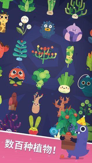 口袋植物国服图1