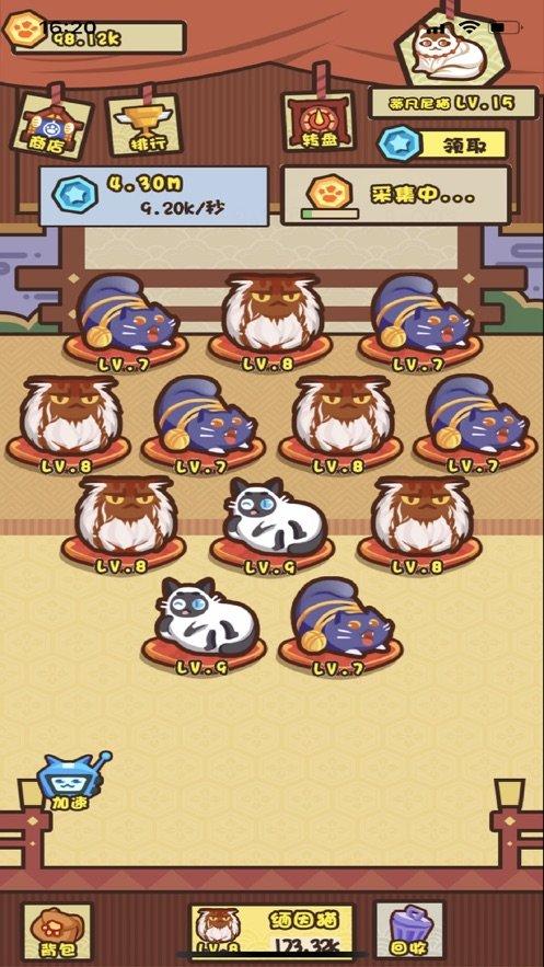 全民养猫红包版图3